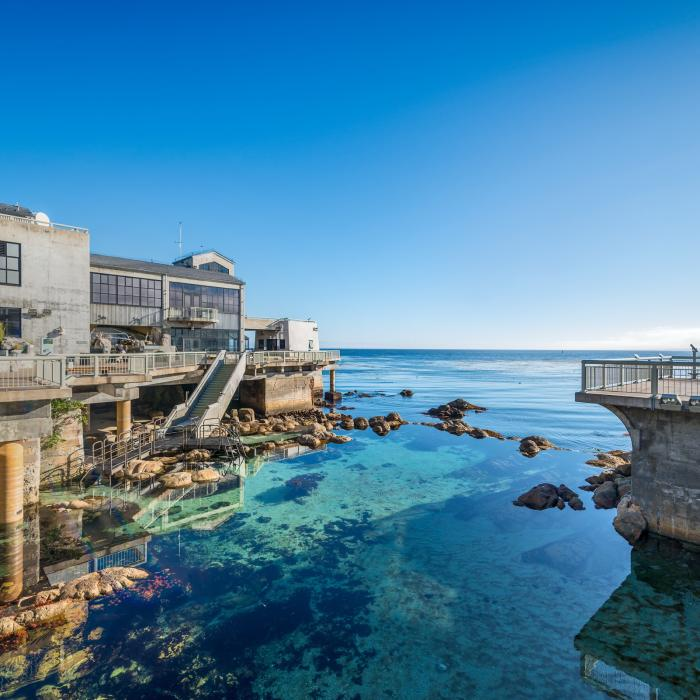 Mopnterey Bay Aquarium deck facing the Monterey Bay. Great tide pool in the foreground.