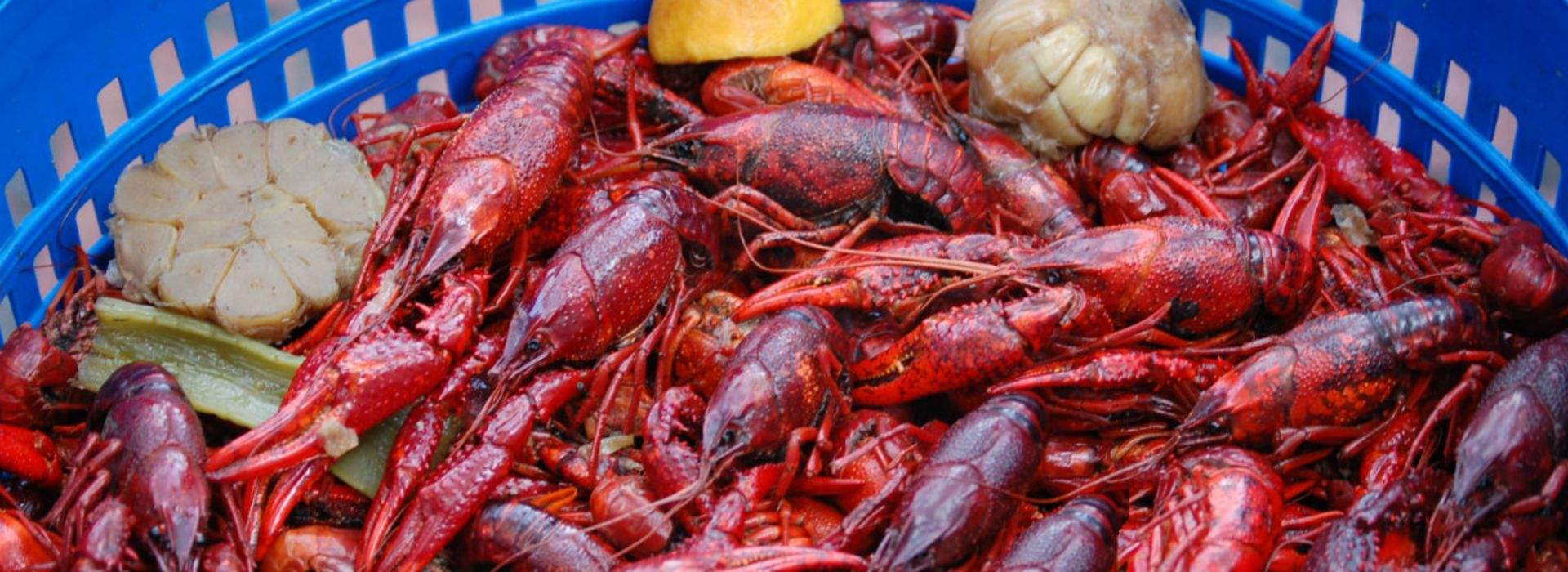 Fresh, Boiled Crawfish