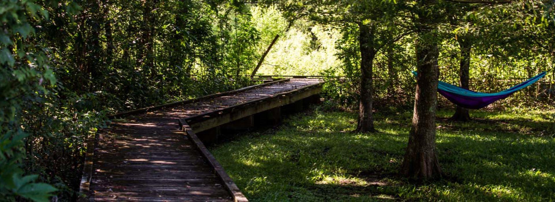 Shaded boardwalk at Bayou Segnette State Park