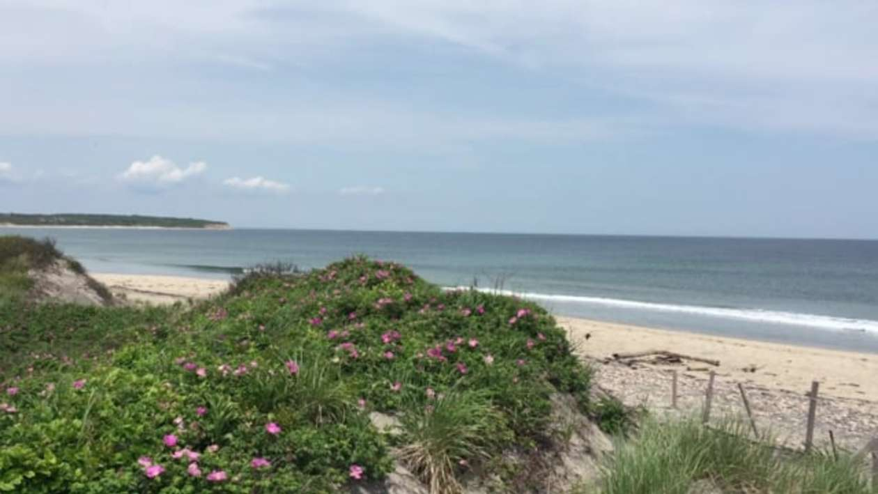 Relax on Rhode Island's Beaches