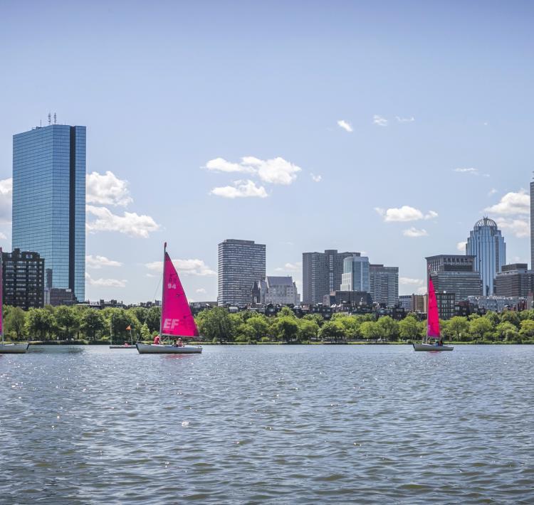 Pink Sailboats on Charles River