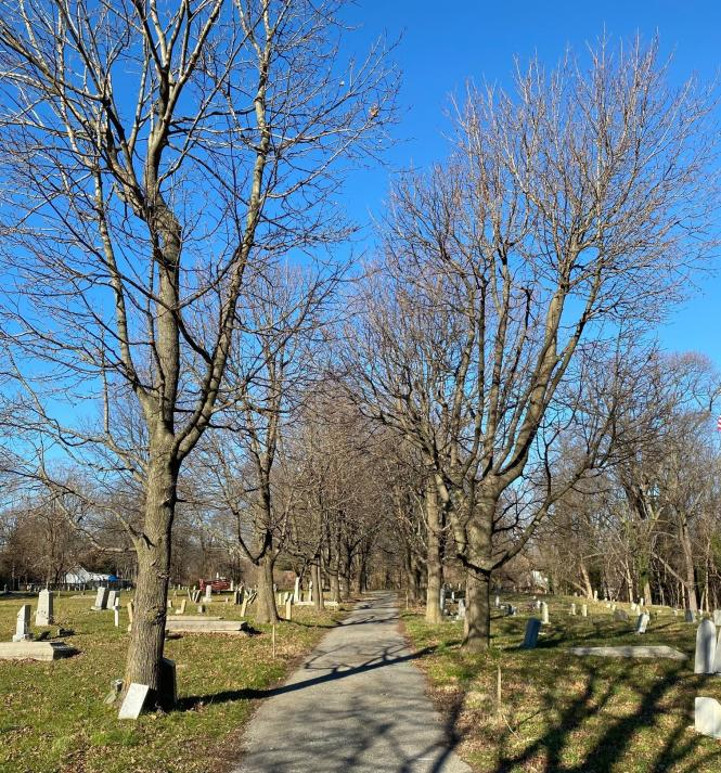 A road winding through Brewer Hill Cemetery.
