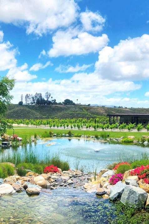 Temecula Wineries - Avensole Garden