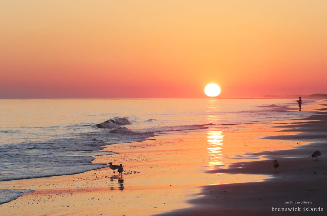 OIB_IMG_8399-sunset