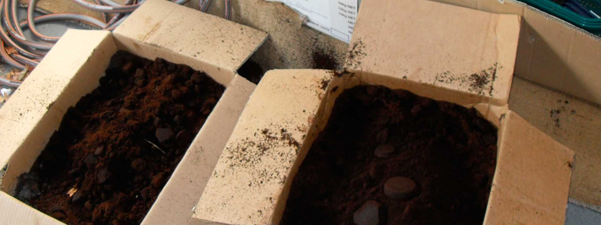 Composting with Coffee