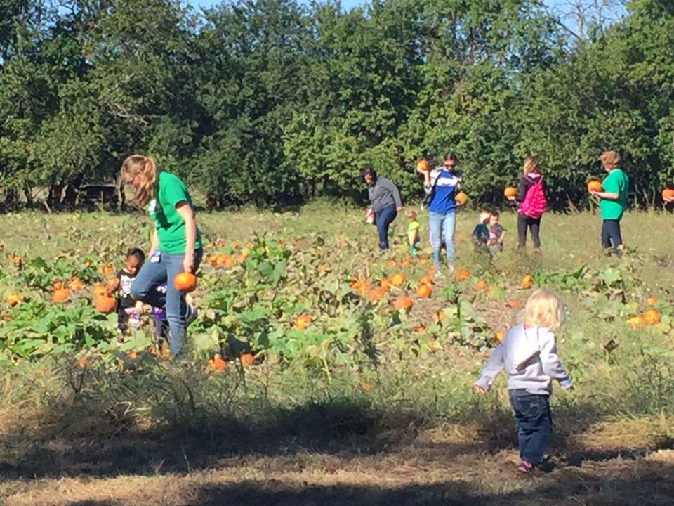 Families picking pumpkins at Applejack Pumpkin Patch in Wichita, KS
