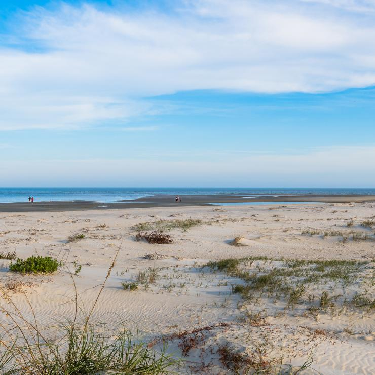 Golden Isles Beaches Driftwood Beach East 7 Mile
