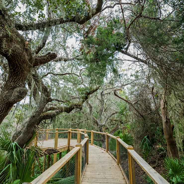 Jekyll Island Map Attractions Top Things To Do On Jekyll Island | Beaches & Attractions