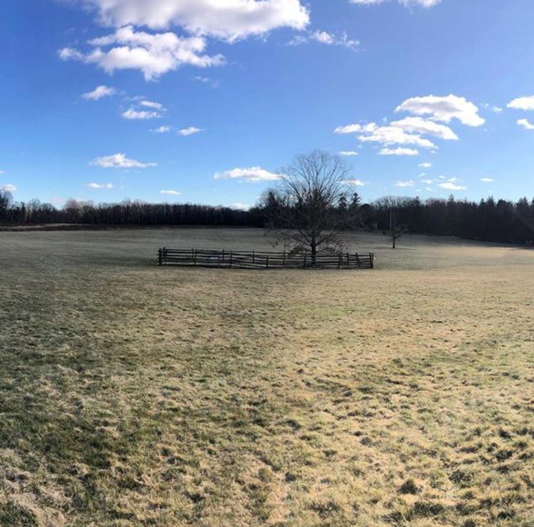 Princeton Battlefield on a sunny day