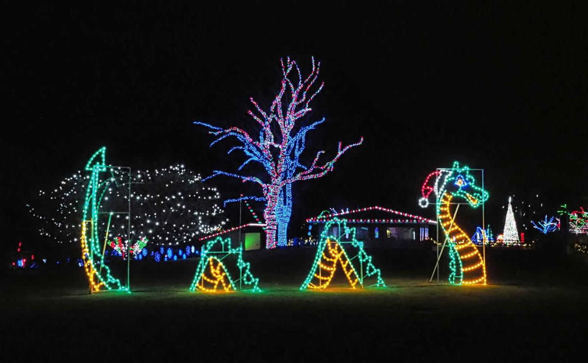 Wonderland of Lights Racine Zoo