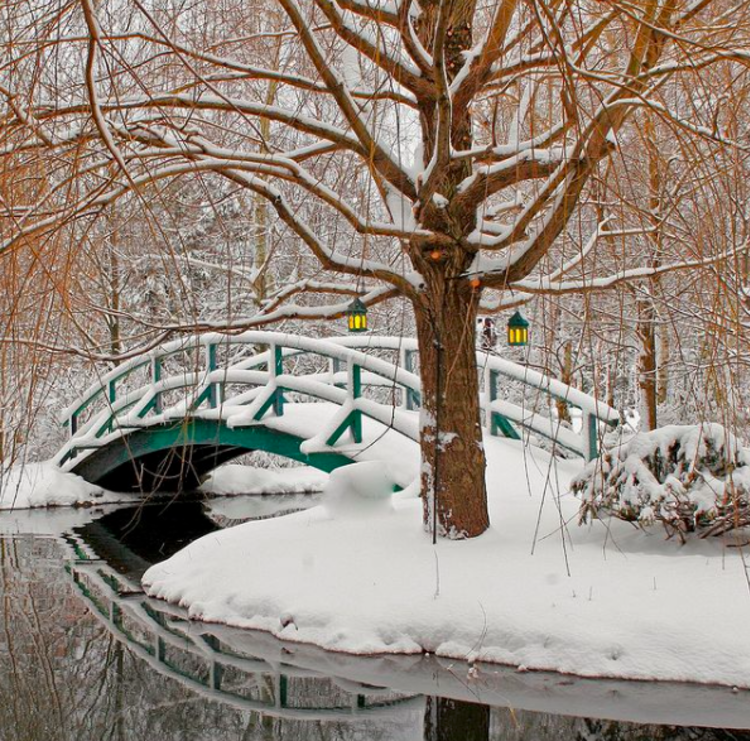 Bridge in winter at Grounds for Sculpture in Princeton