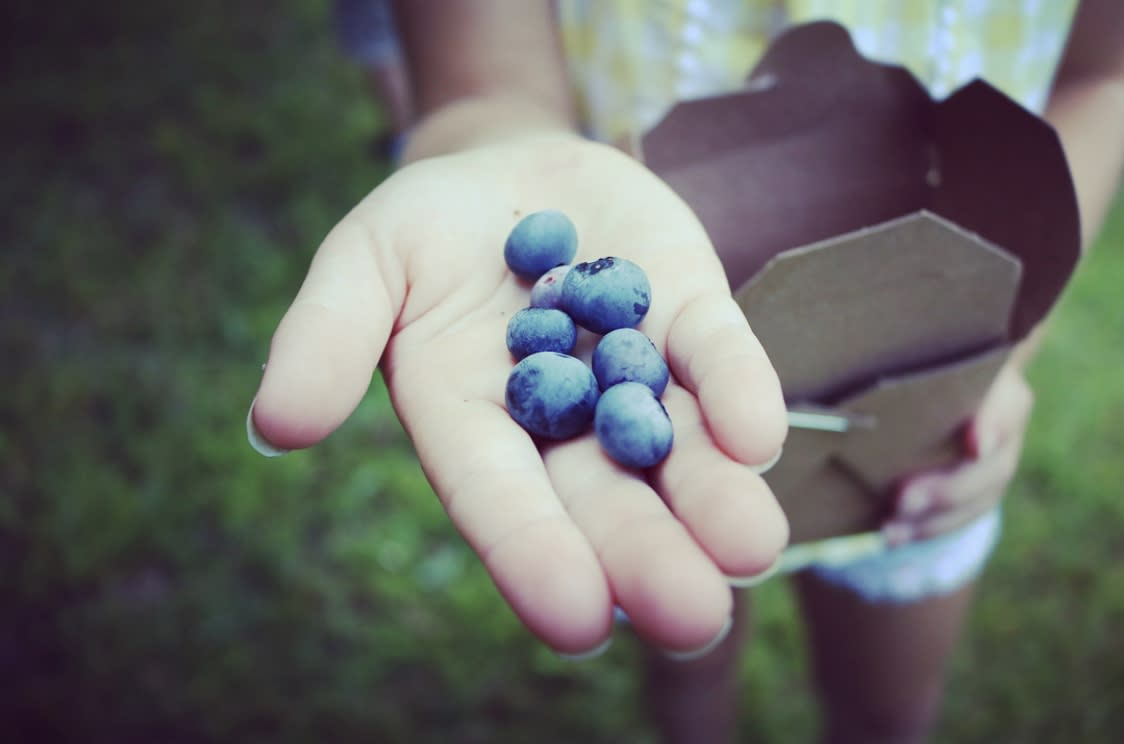a child holding a handful of blueberries