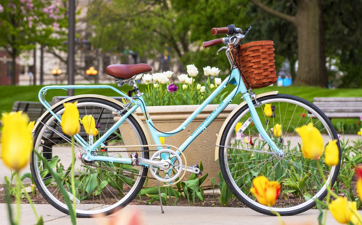 Izzy the Bike