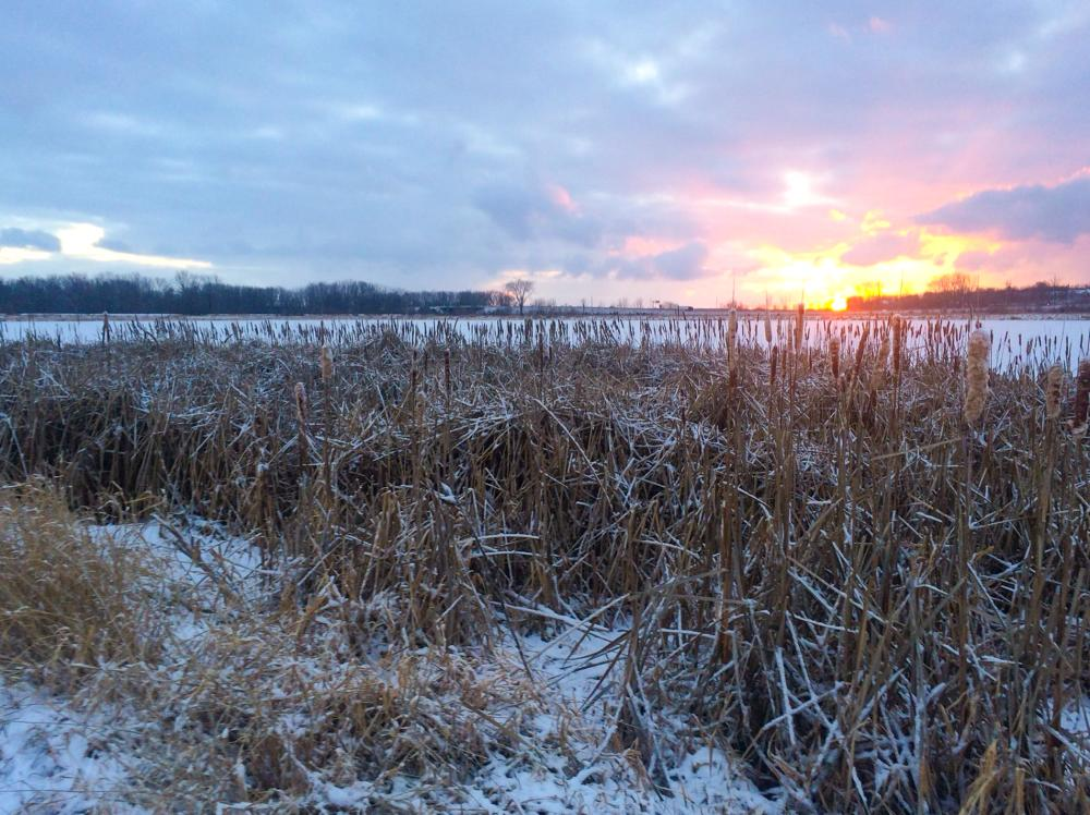 Winter sunrise at Eagle Marsh Nature Preserve in Fort Wayne