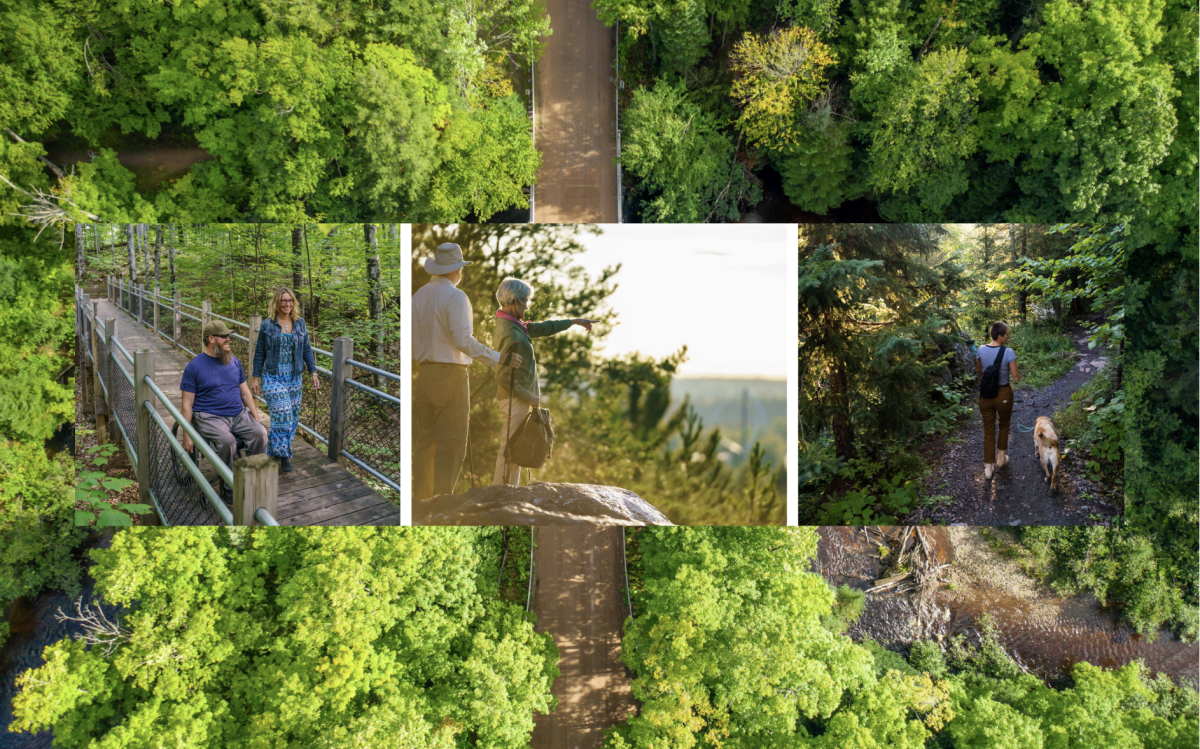 A collage of hiking shots in the summertime