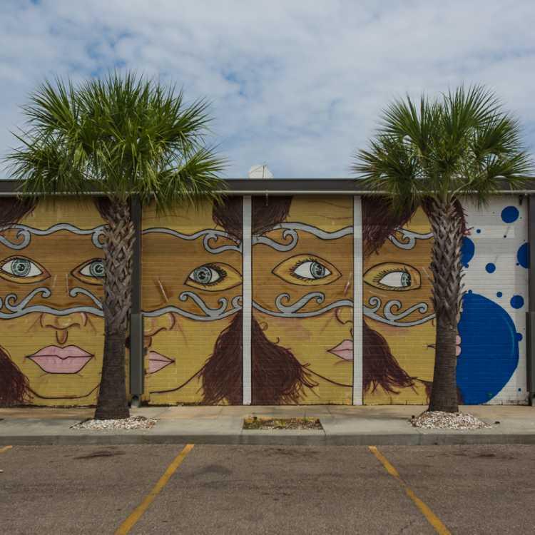 Jefferson Parish Murals