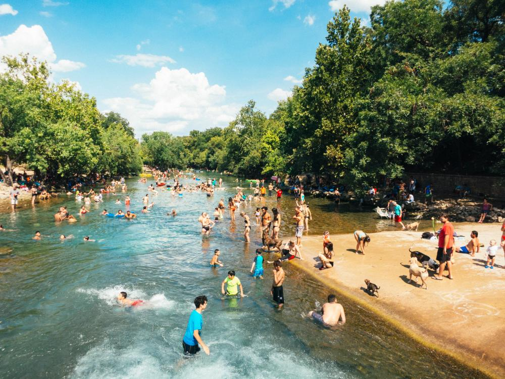 A crowd of people and dogs swim in the shallow spring water of Barkin Springs on a sunny day