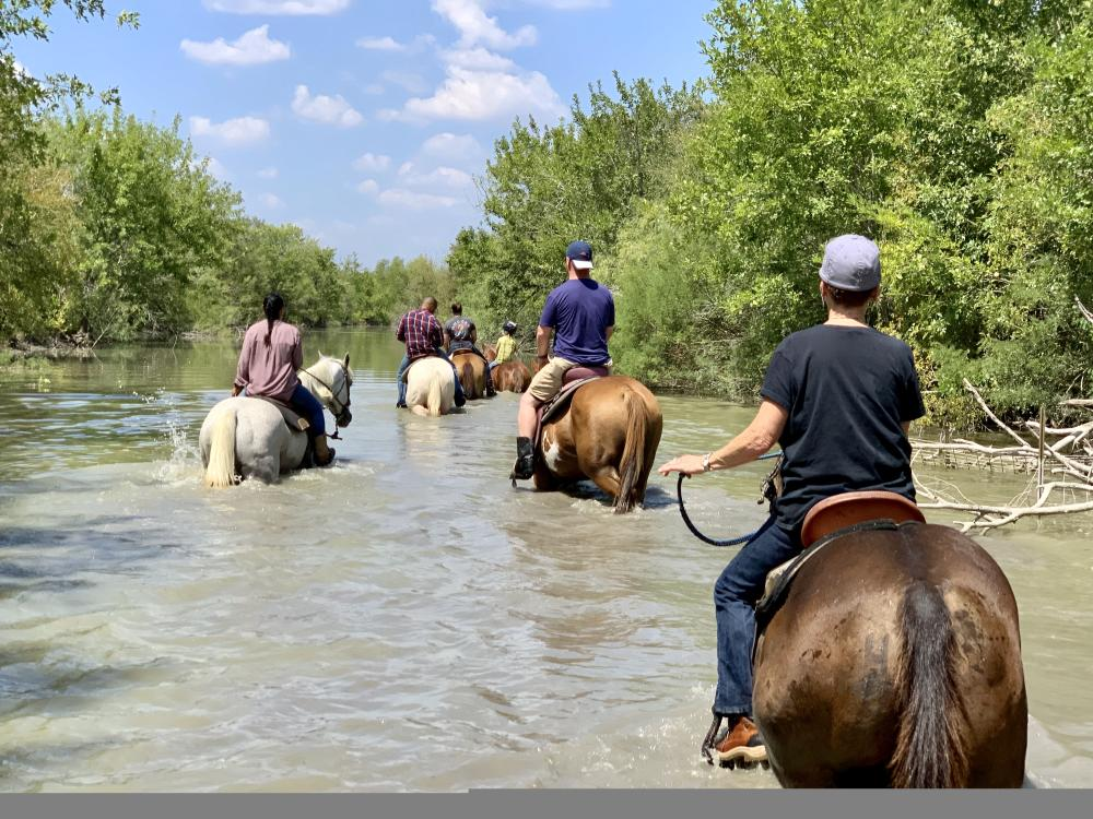 horseback riding through creek with Maverick Horseback Riding in Lockhart near Austin Texas