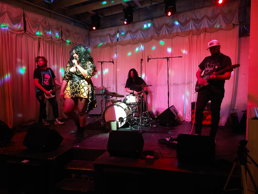 Pleasure Venom band on stage at Swan Dive with spotlight on female lead singer