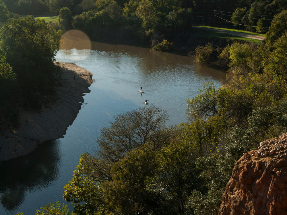 View of people Paddle boarding on the Colorado River from a Cliff in Bastrop Texas