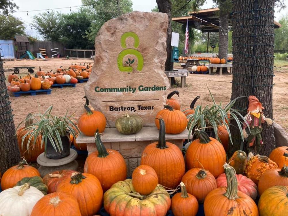 Pumpkin Patch Community Gardens