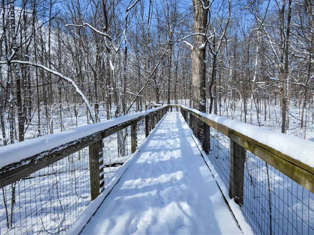 Snow covered Trail of Reflection at Lindenwood Nature Preserve in Fort Wayne