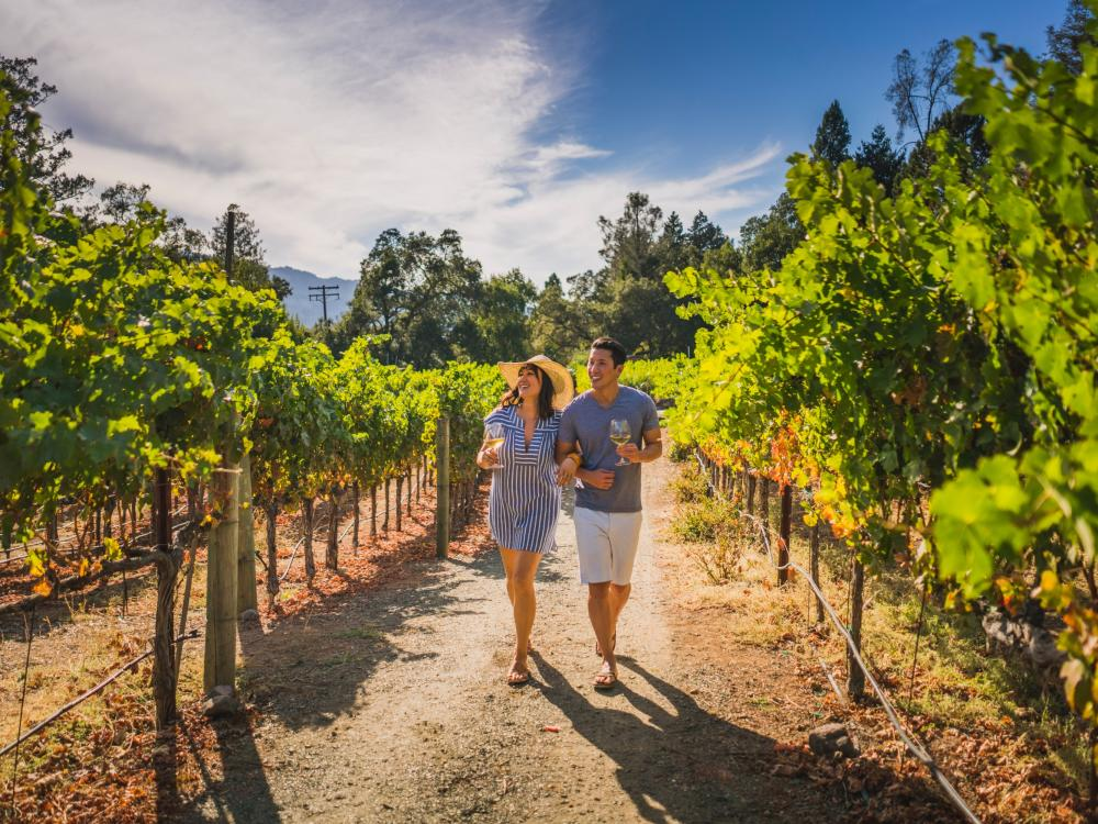 Strolling through Napa Valley vineyards