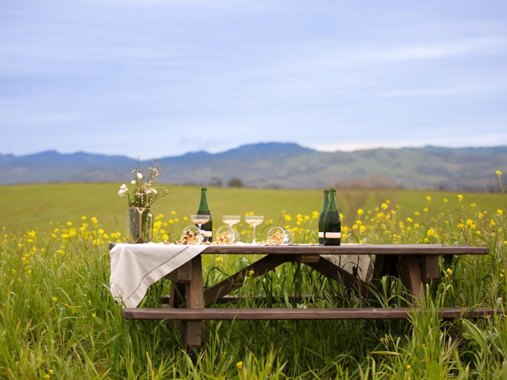 Five Unique Winery Experiences in Napa Valley