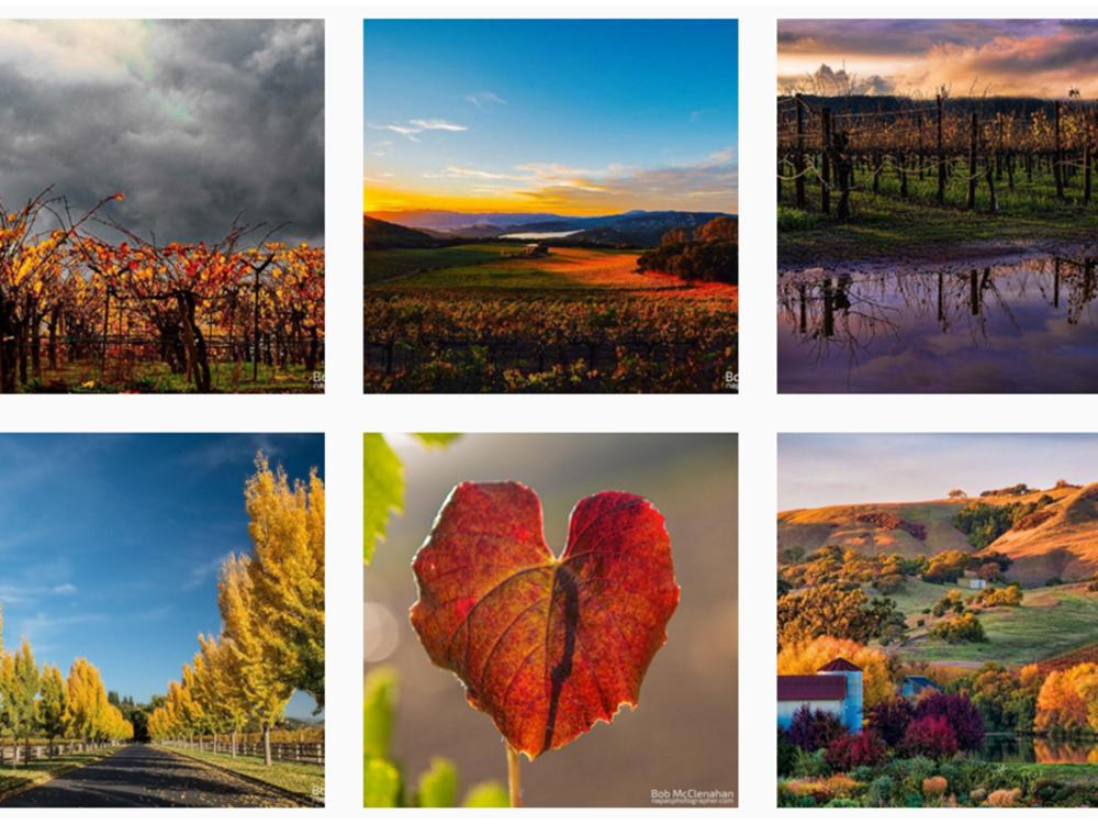 Bob McClenahan: 6 Napa Valley Artists & Photographers to Follow on Instagram