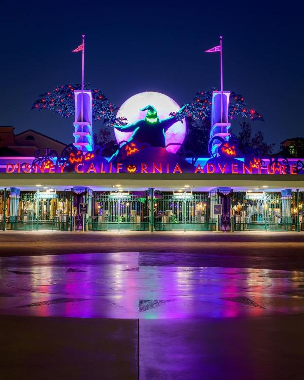 Image of the front of Disney California Adventure Park. Image is taken at night and a sign reading 'Disney California Adventure' is lit up in red and purple lights. Oogie Boogie from The NightMare Before Christmas is seen above the sign.