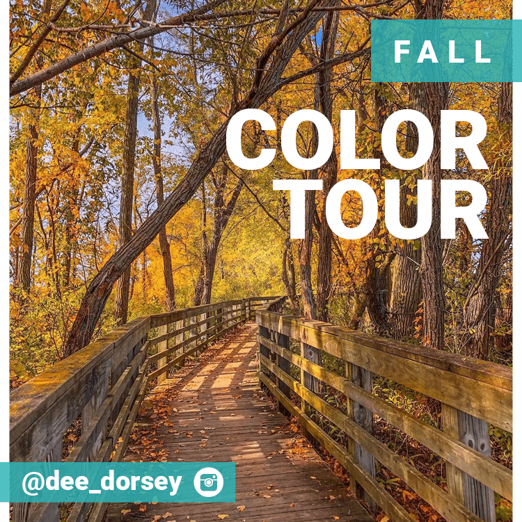 Self-Guided Tours - Fall Color Tour
