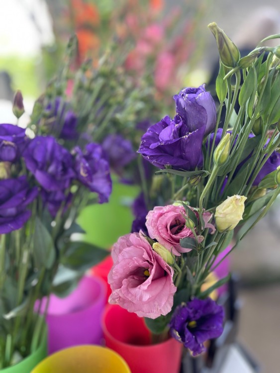 Fresh Flowers from Carrboro Farmers' Market