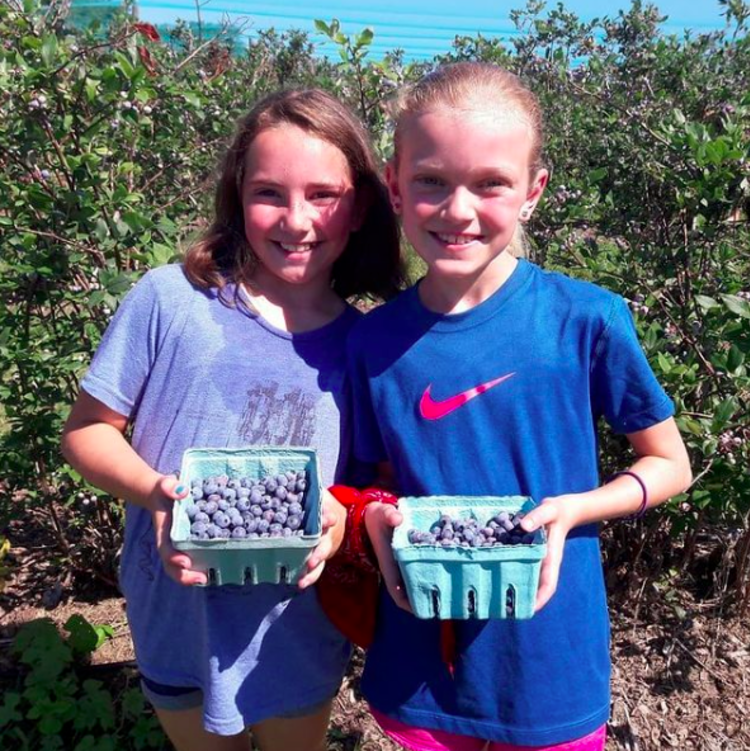 Two girls holding small picking containers filled with blueberries, picked at farms in Mercer County, NJ.