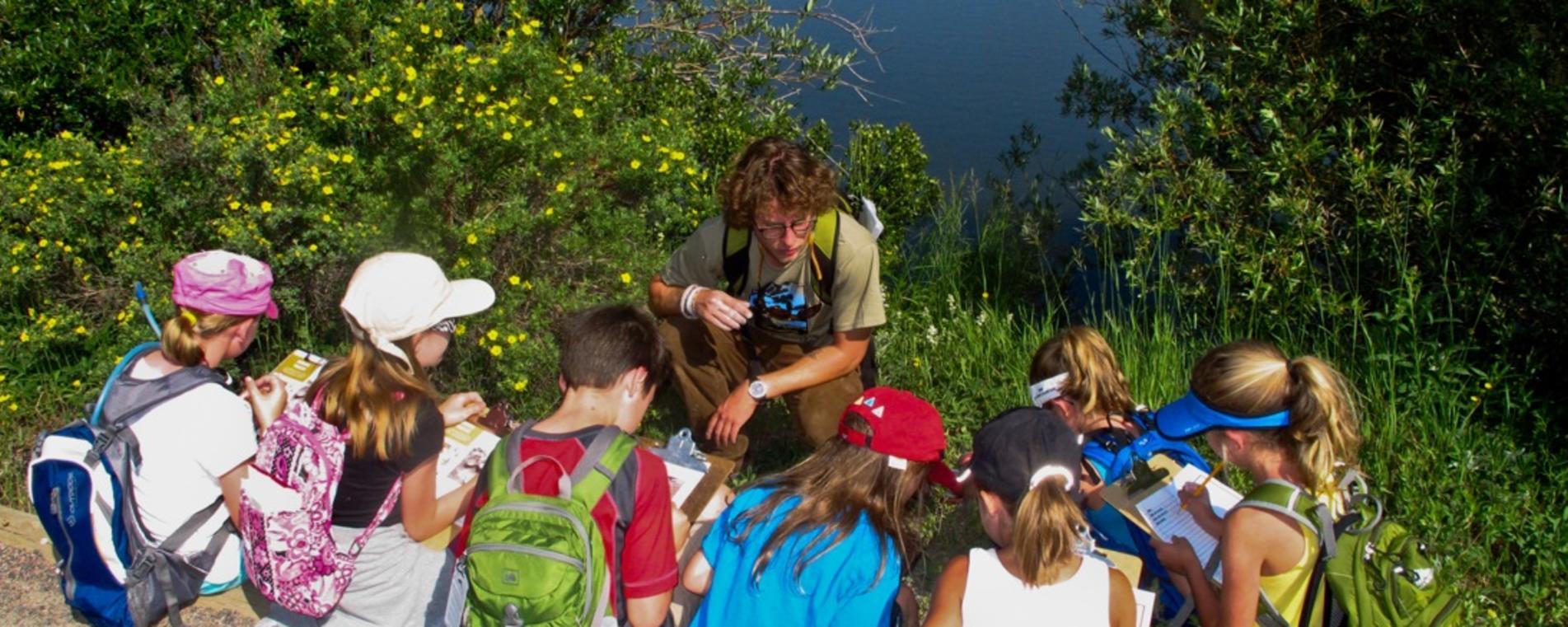 Lily Lake Nature Hunt: A Virtual Geocache Adventure - Image