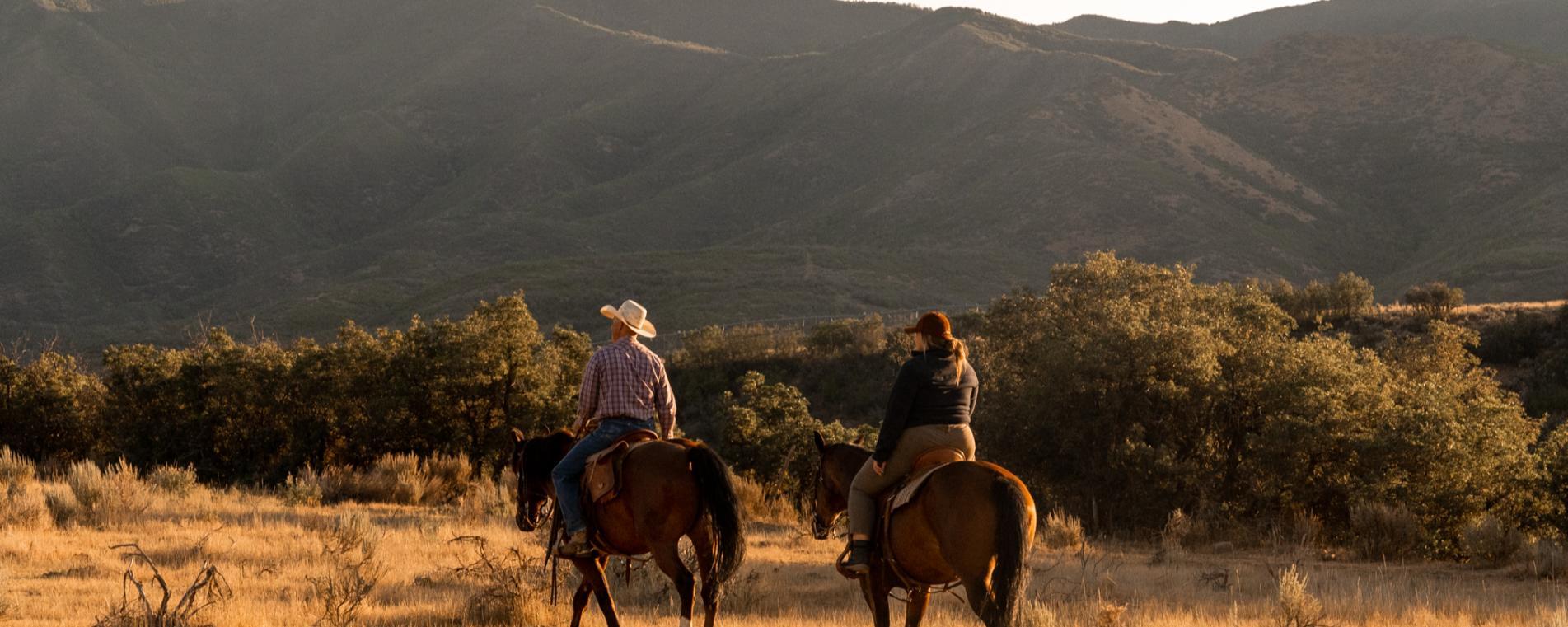 Hobble Creek Outfitters Horseback Ride