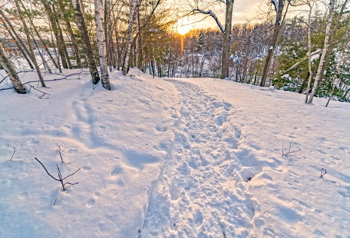 Looking for where to snowshoe in central Wisconsin? You'll want to add the Green Circle Trail to the list, in the Stevens Point Area.