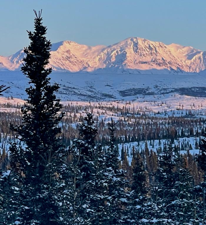 Mountains with Trees in Eastern Alaska Range