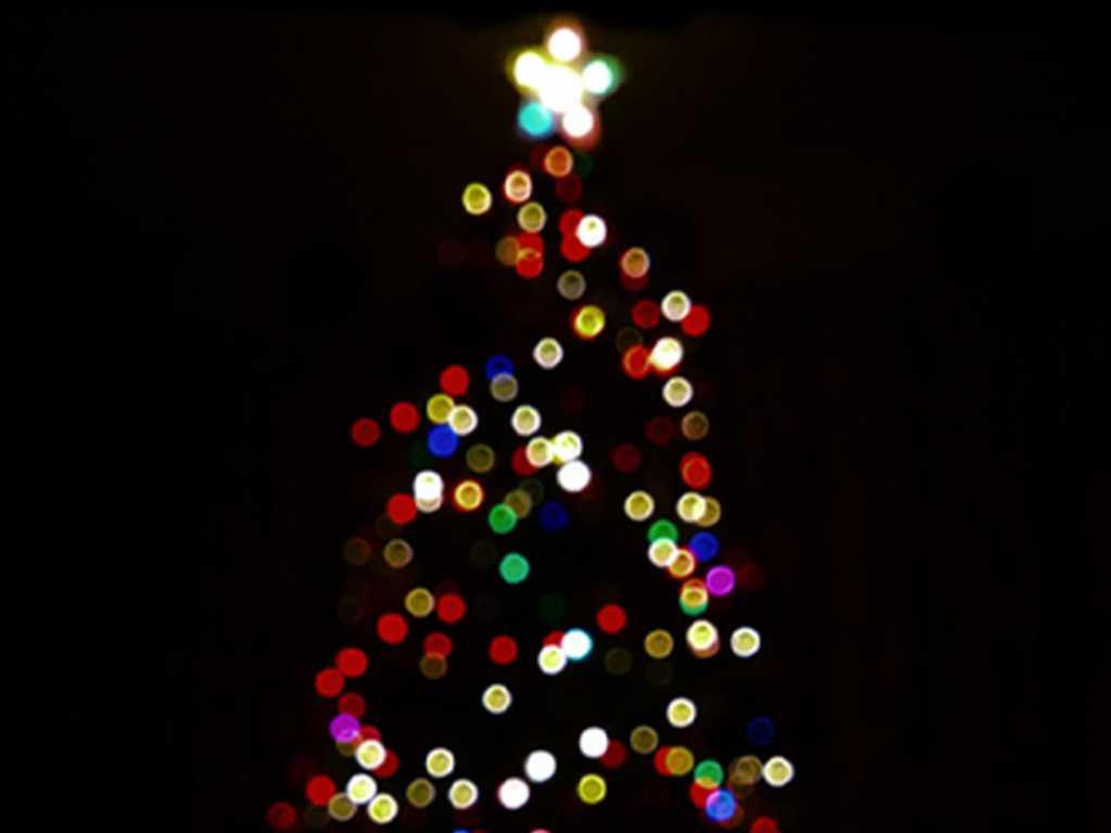 christmas tree | Leisure and Travel Blog