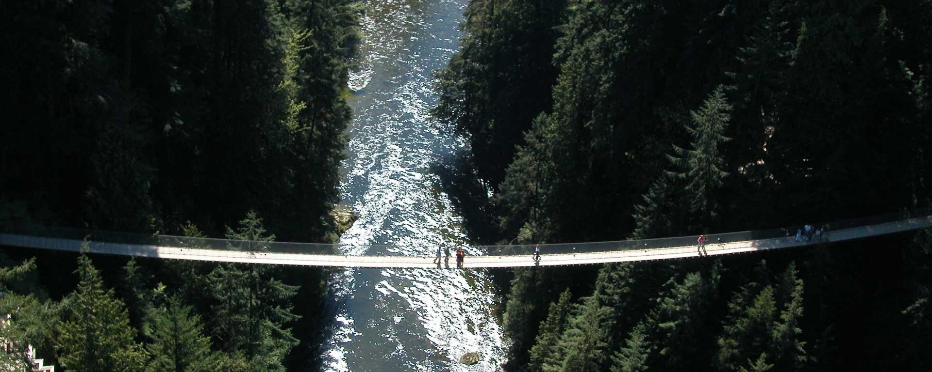 Capilano Suspension Bridge Park Guide