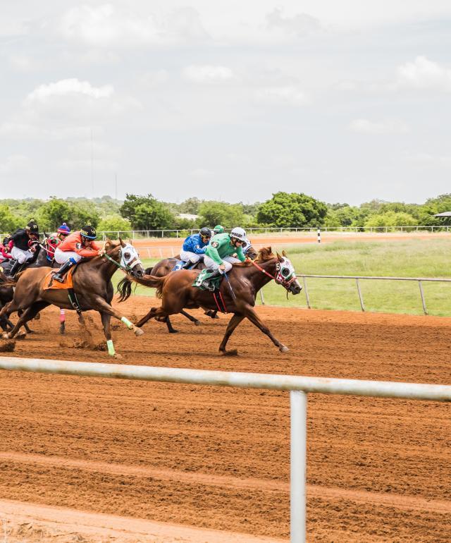Gillespie Country Fair Horse Racing