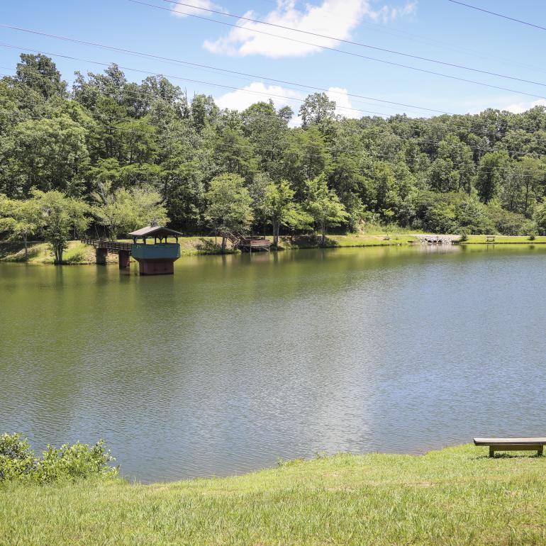 City Lake Park Haleyville