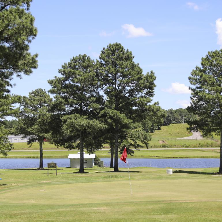 Haleyville Country Club