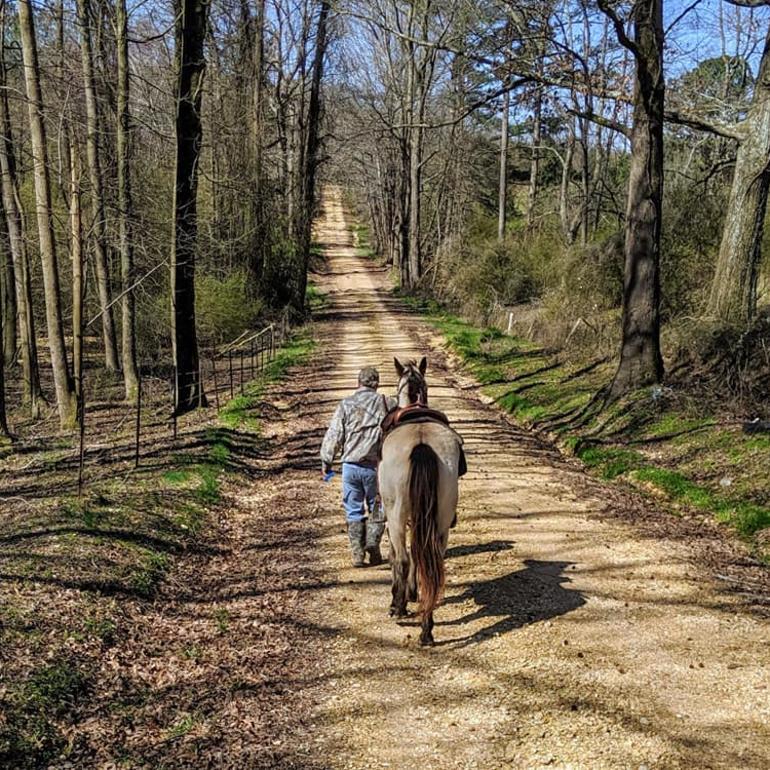 Hodges Equestrian Park