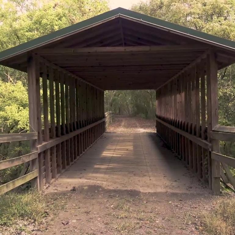 The Richard Martin Trail