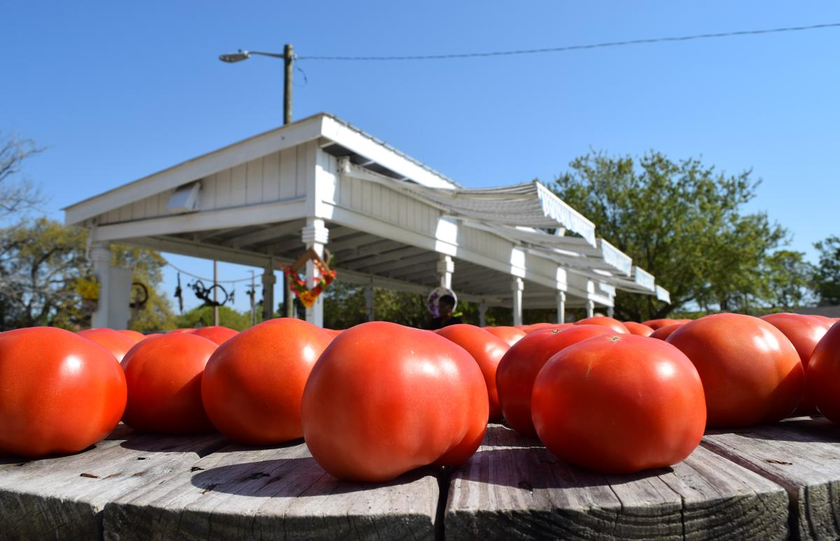 Farmers' Markets in the Grand Strand offering local produce and crafts in the Spring and Summer months.