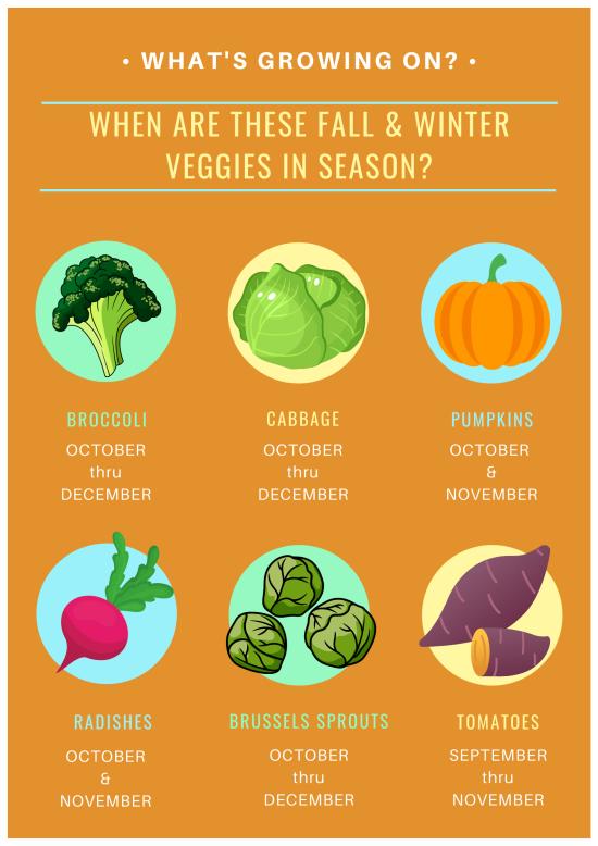 Growing Season Graphic FALL / WINTER