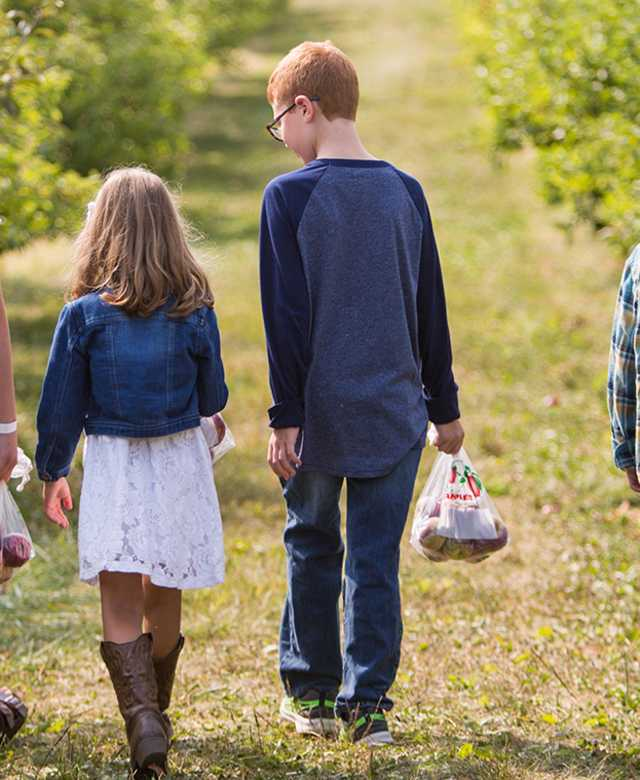 Family of 4 walking through an apple orchard