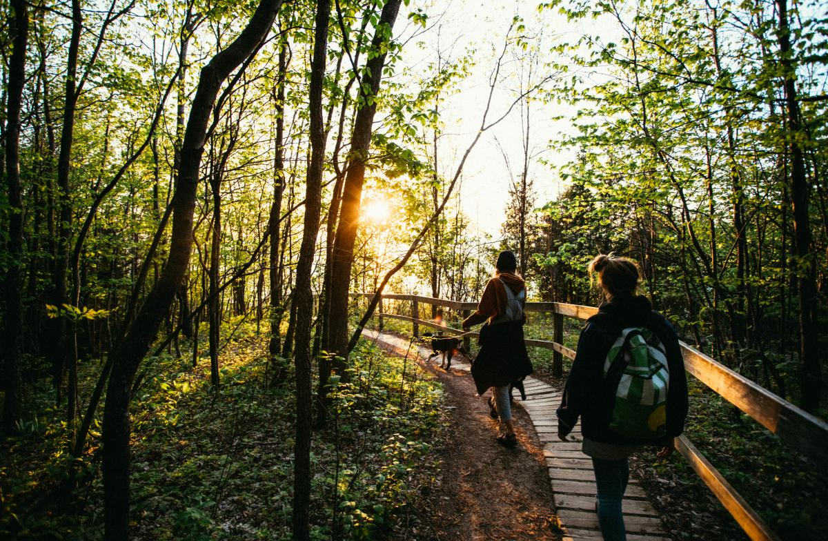 Hike at Empire Bluff Trail - Sleeping Bear Dunes