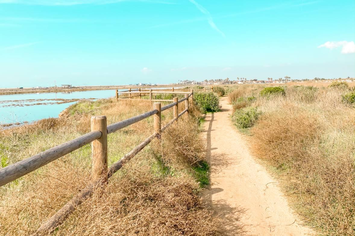 Huntington Beach Bolsa Chica Ecological Reserve