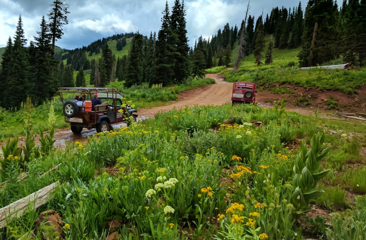 Jeeping-off-roading